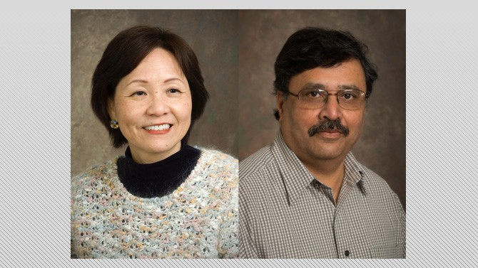 Researchers receive funding to facilitate translation of biomedical data