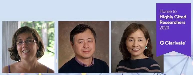 2020 Highly Cited Researchers